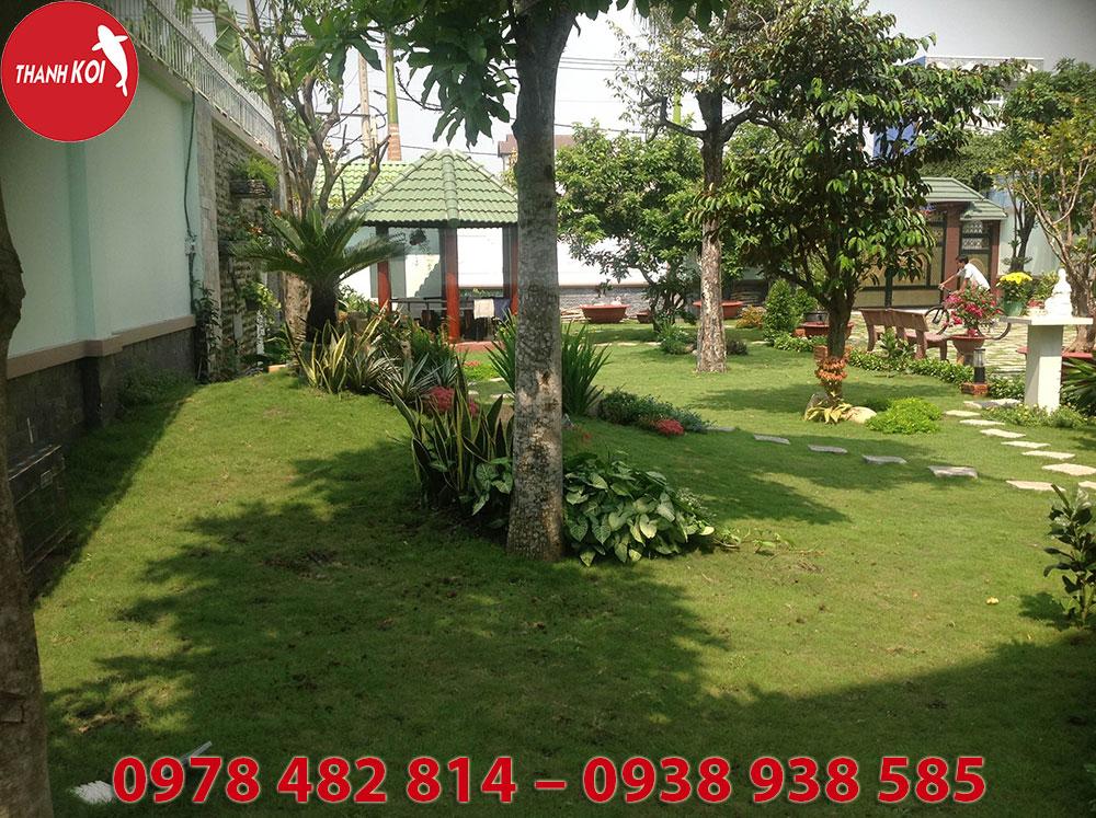 Thi công thiết kế tiểu cảnh sân vườn đẹp, chất lượng tại Tphcm